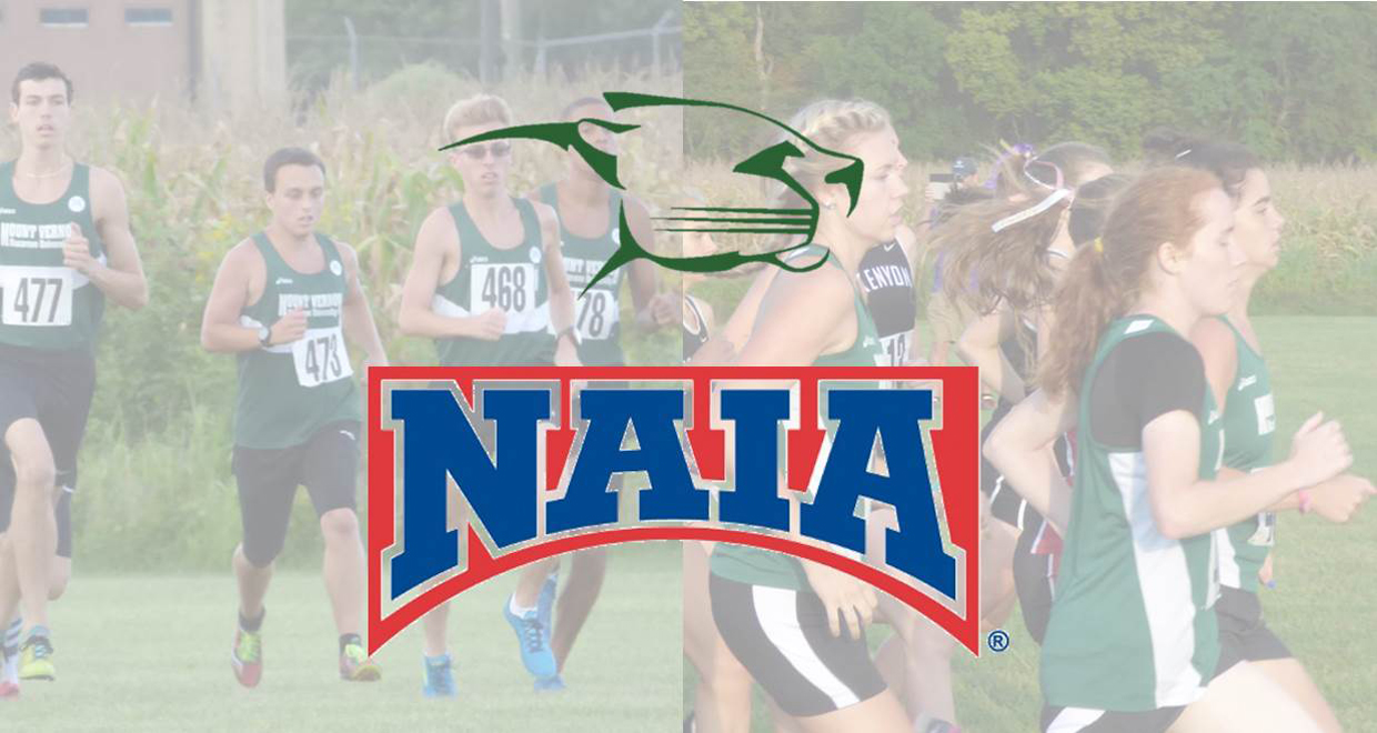 Photo for Runners Earn Daktronics-NAIA Scholar Athlete Honors
