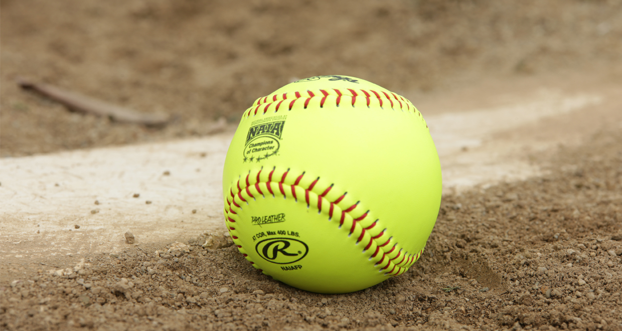 cougar softball matchup with wildcats delayed to wednesday mount